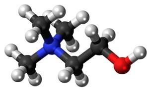 choline supplementation